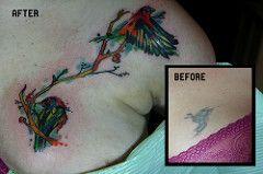 watercolor bird tattoo coverup   by Deanna Wardin @ Tattoo Boogaloo