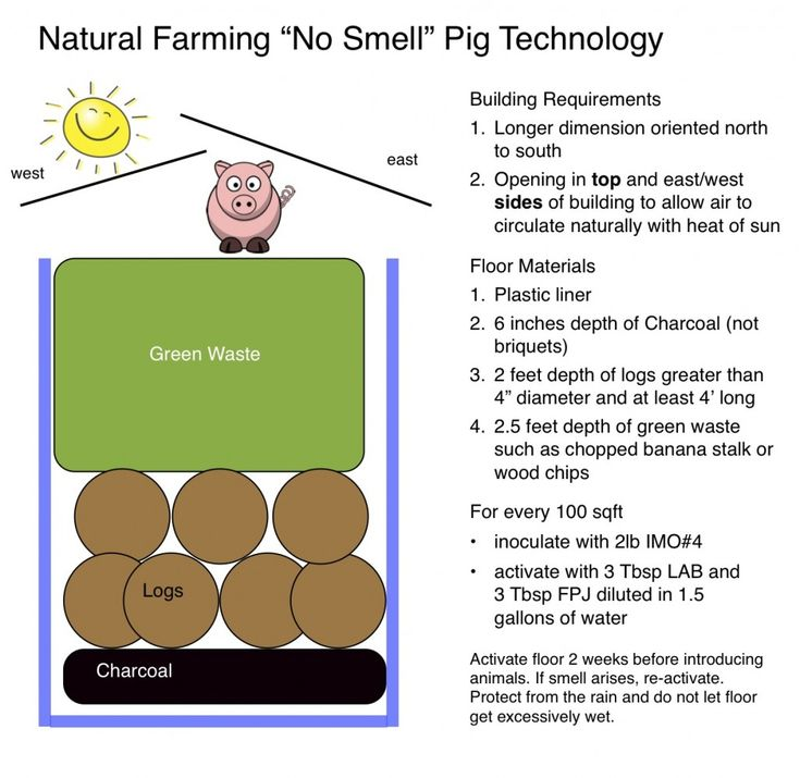 odorless pig technology (natural farming) #naturalfarming #koreannaturalfarming #hawaiiecoliving