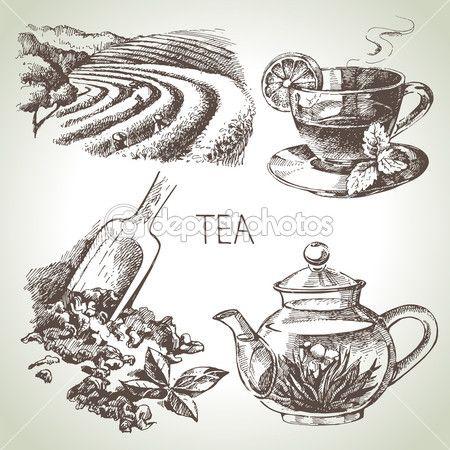 Tea. készlet — Stock Illusztráció #42063583