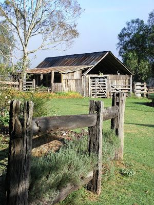 Camden History Notes: The Cowpastures, just like an English landscape.