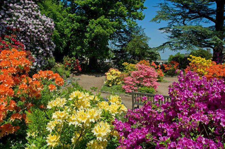 Сады замка Вентворт.Барнсли,Великобритания. Обсуждение на LiveInternet - Российский Сервис Онлайн-Дневников