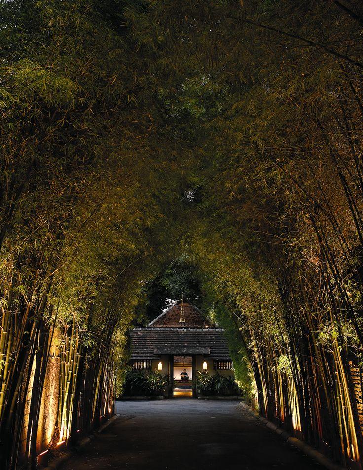 Beautiful Chiang Mai