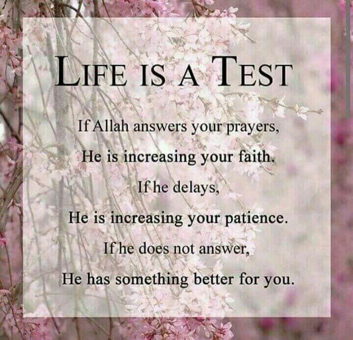 Test to increase iman