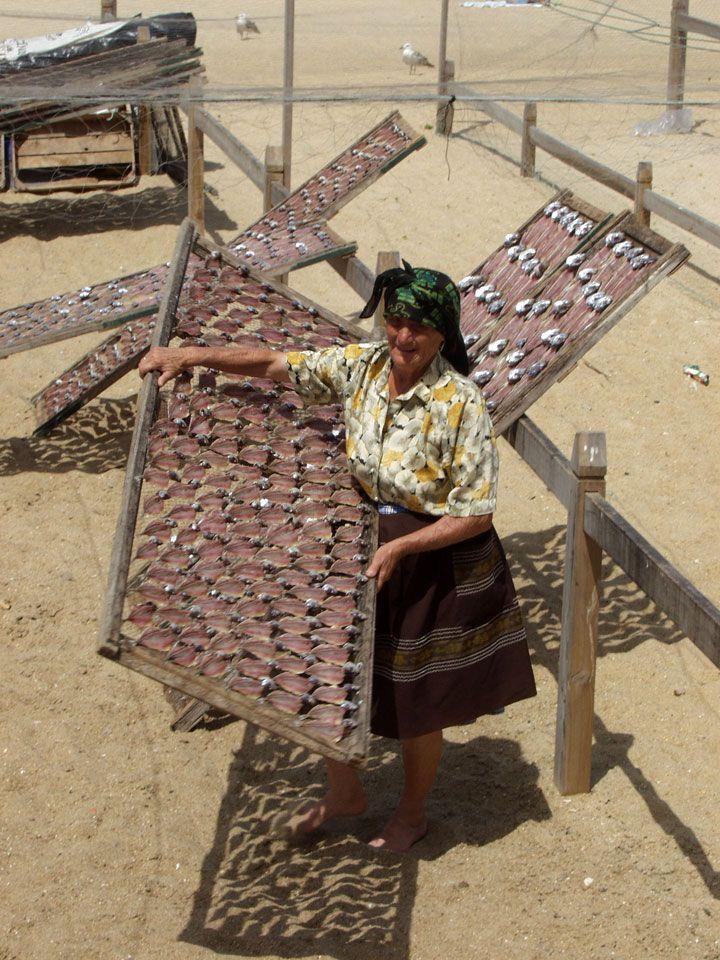 Seca de carapaus, Nazaré (2006)