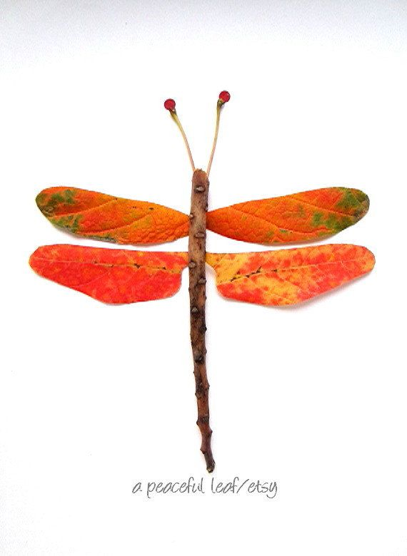 Leaf dragonfly photo. Colorful wall art collage. by APeacefulLeaf, $25.00