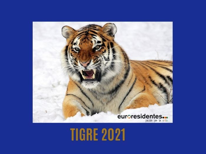 Ano Chino 2021 Rata