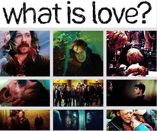 What is love? o-o