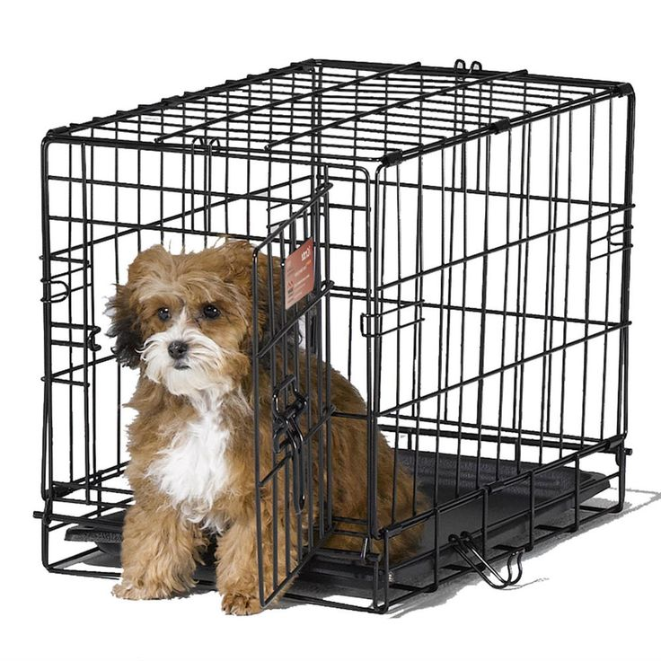 DOG CRATE training small dogs pets puppy medium size large wire dog cage carrier