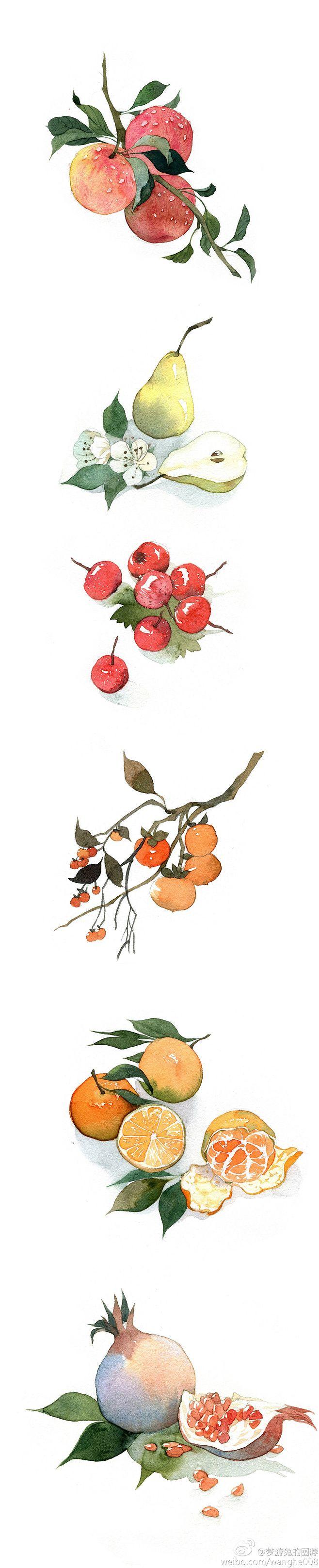 手绘水彩水果 @梦游兔的围脖 #手绘# ...