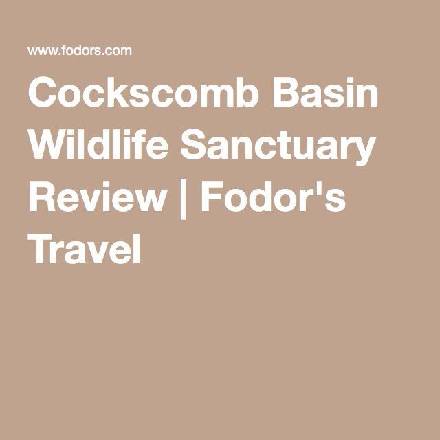 Cockscomb Basin Wildlife Sanctuary Review | Fodor's Travel