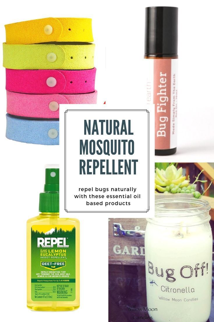 Best Natural Mosquito Repellent To Buy Or Diy That Really Work