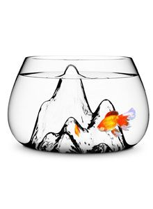 Glasscape Fishbowl Modern Glass Fish Bowl $97@ http://www.houzz.com/photos/7211633/Fishscape-Fishbowl-modern-fish-supplies