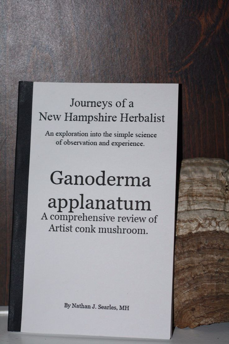 Ganoderma applanatum; A comprehensive review of Artist conk mushroom. by ForgottenTraditions on Etsy https://www.etsy.com/listing/212450266/ganoderma-applanatum-a-comprehensive
