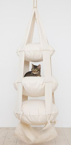 The Cat's Trapeze 3 Level