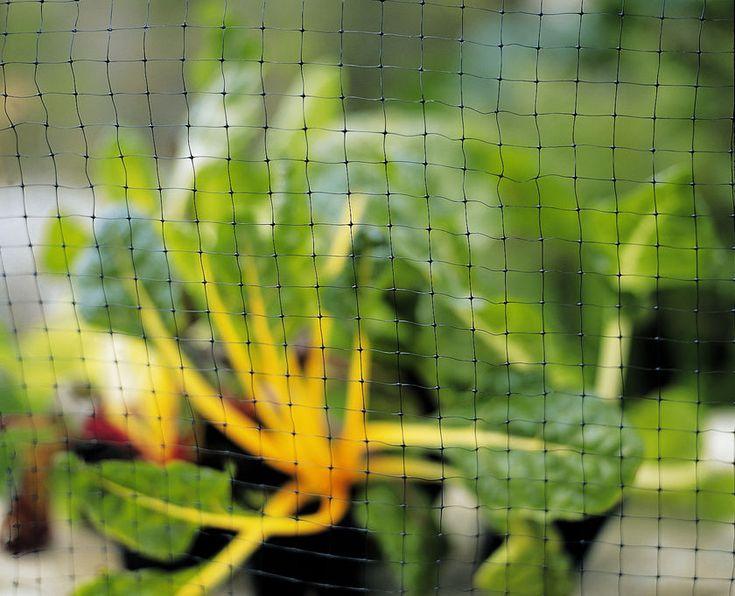 Deer Fence, Deer Fencing, Deer Netting | Gardeners.com