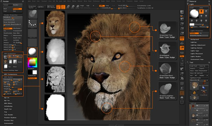 Zbrush Free Student Download
