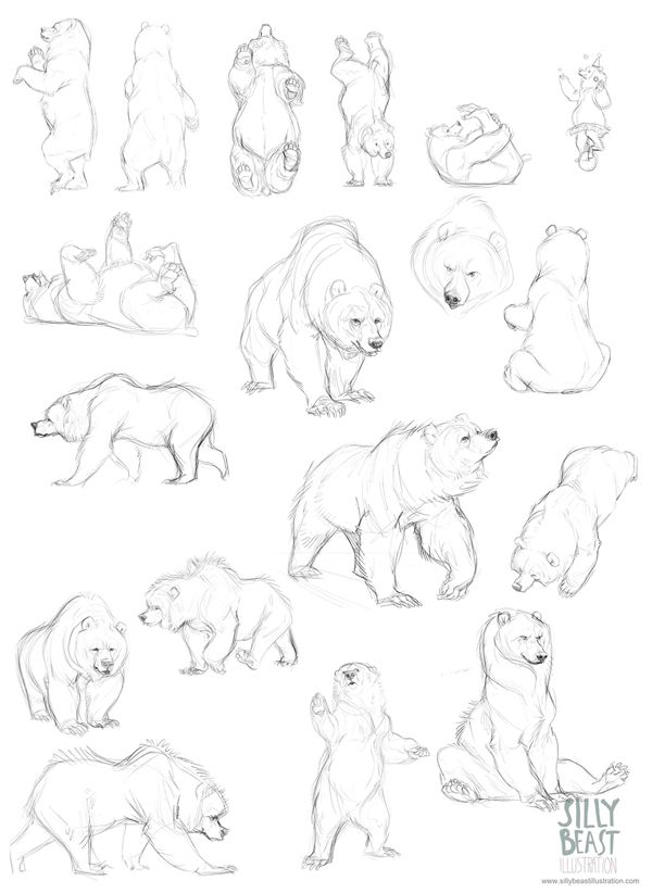 Bear concepts by Therese Larsson, via Behance - because you never know when you'll draw a bear :)