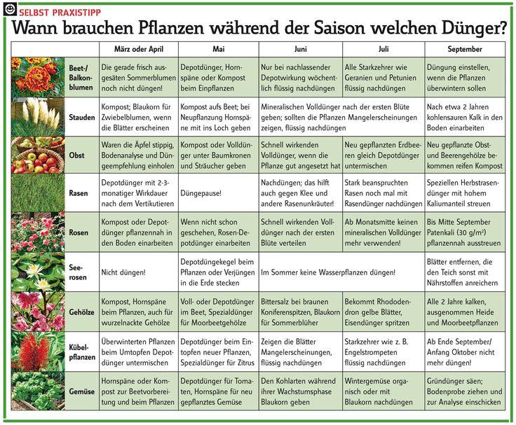 die besten 17 ideen zu gartenkalender auf pinterest | gärten, Garten und Bauen