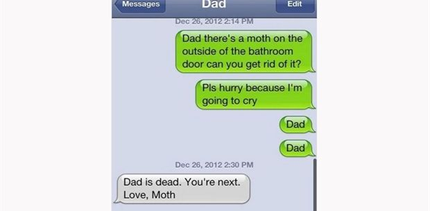 moth (3)