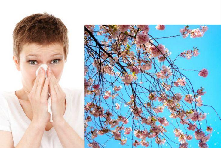 Μισώ τις ανοιξιάτικες αλλεργίες! Οδηγός επιβίωσης!