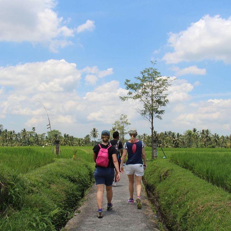 Just another day exploring Bali's lush green countryside on our Sambangan Nature Hike.
