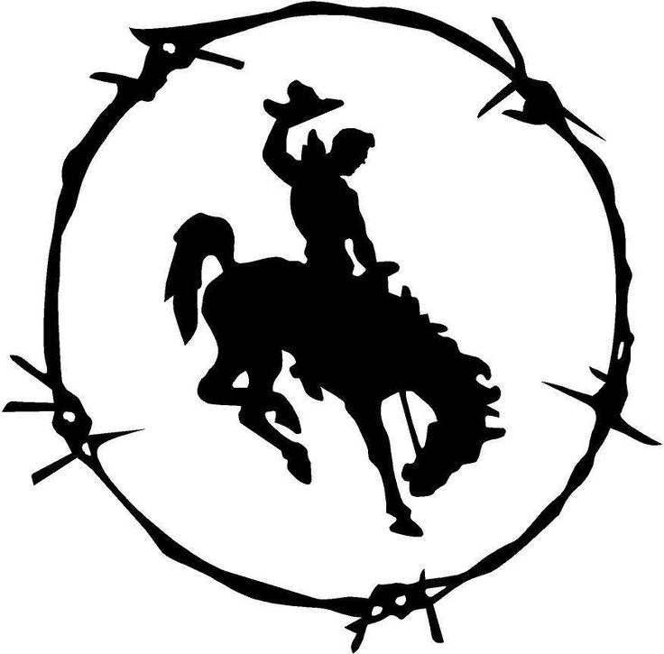 LARGE BLACK Vinyl Decal - Bronc in Barb wire rodeo cowboy country truck farm…