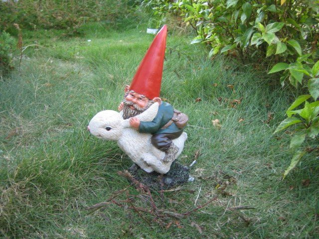 25 best ideas about funny garden gnomes on pinterest for Lawn ornaments for sale