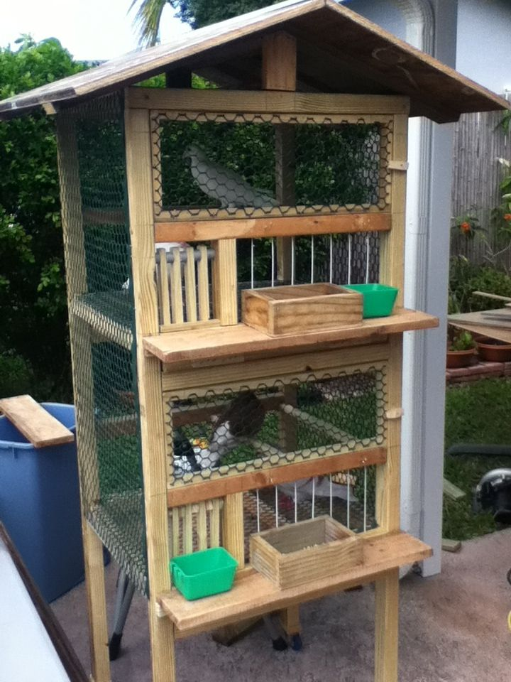 25 best ideas about pigeon cage on pinterest macaw cage for Pigeon coop ideas