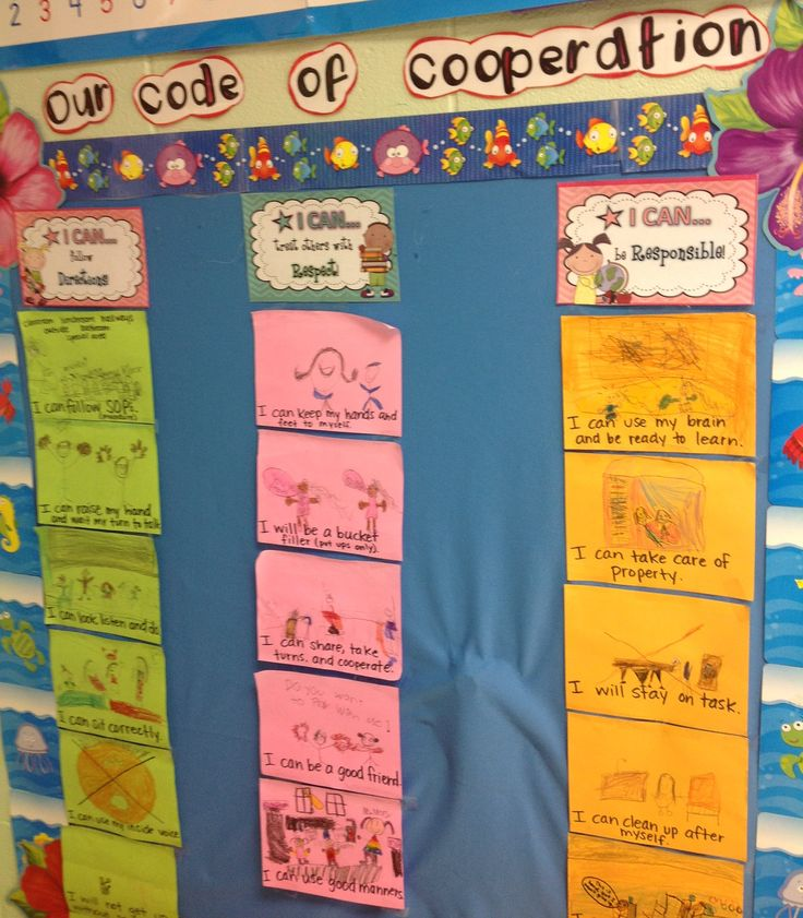 Classroom code of cooperation with individual student visual examples
