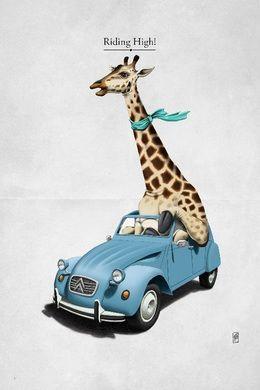 Riding High by rob-art at zippi.co.uk art | decor | wall art | inspiration | animals | home decor | idea | humor | gifts