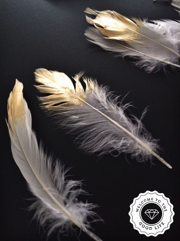 Easter feathers with a hint of gold.