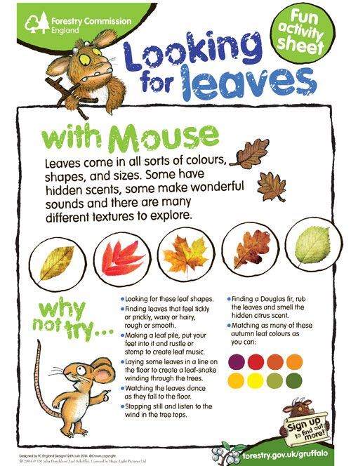 Get the kids out exploring the sights of autumn with this autumn activity sheet - http://bit.ly/1r3lPfc