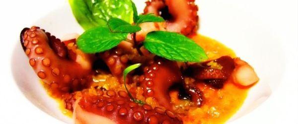 Tentacoli di polpo su gazpacho al cointreau con pane carasau
