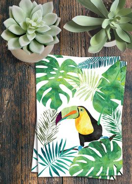toucan Tukan tucán Illustration postcard Postkarte