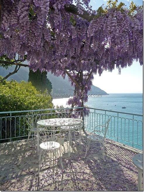 Positano, Province of Salerno , Campania region , Italy... dining in beauty... flora & coastal views