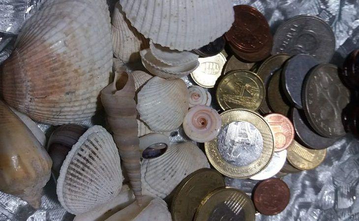 Mind Nap Alap: Pénz Boldogság az otthonodbanA feng shui szerint...
