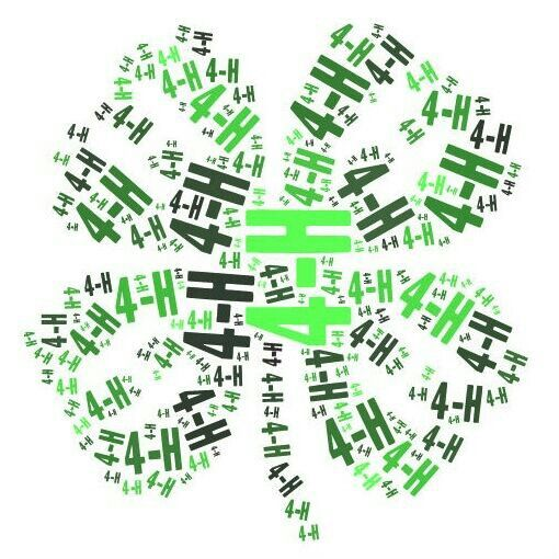 4-H ♥ could be a cool T shirt design