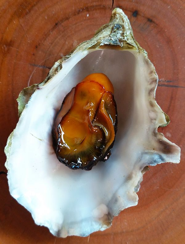 Smoked oysters recipe from Hunter Angler Gardener Cook.