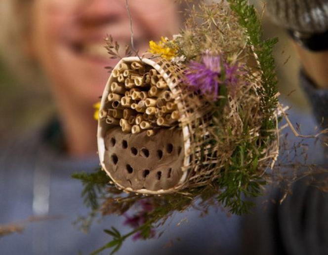 Insectenhotel maken   Natuurmonumenten