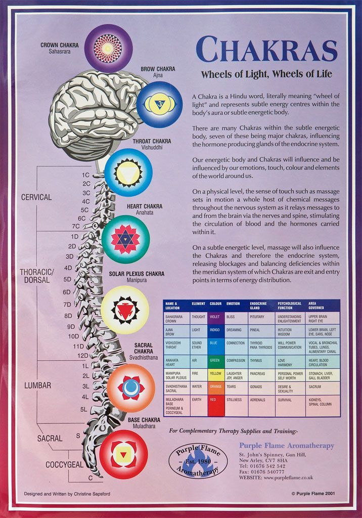 Chakras Chart A3 Poster Wall Chart
