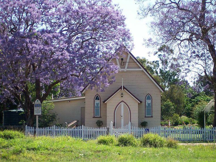 Jacaranda Wooroolin Australia