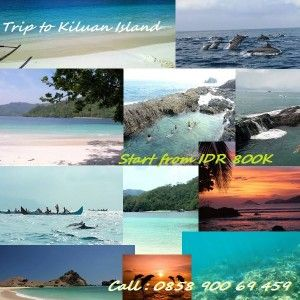 Paket Wista Hemat Teluk Kiluan Lampung Join now… 085890069459 (ephoy)