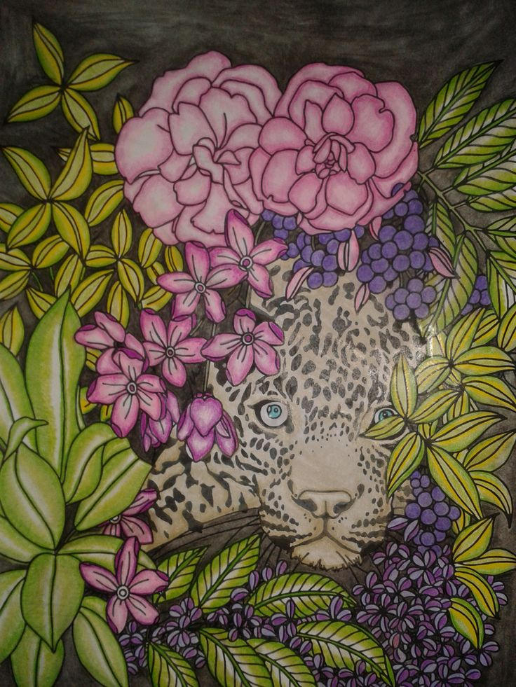 Claire Cater - The Can't Sleep Colouring Book