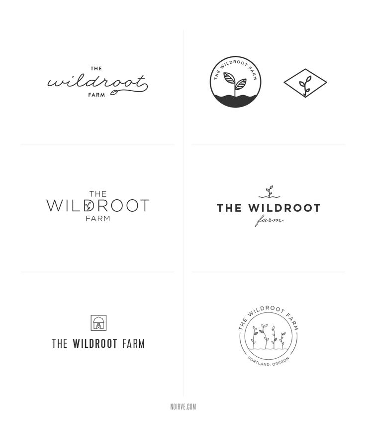 Rejected logo concepts for Wildroot Farm || Noirve