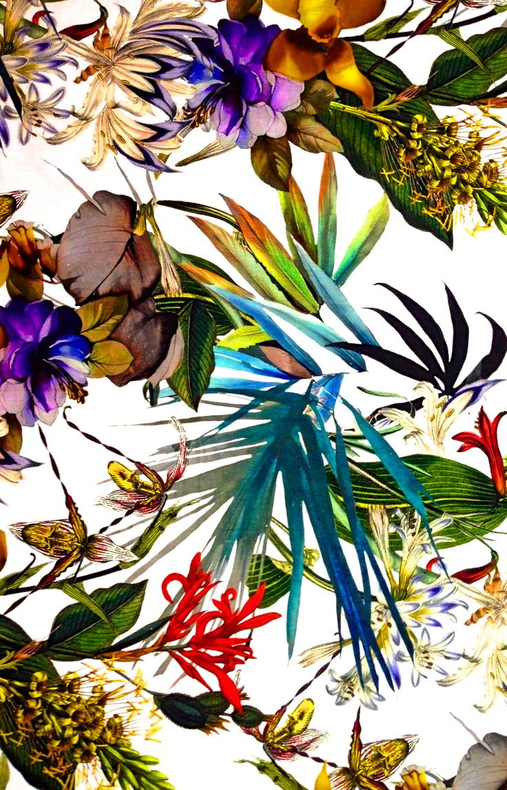 Tropical flowers, Tropical and Summer prints on Pinterest