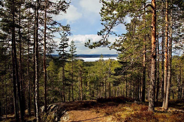 Hyyppäänvuori Laukaa Central Finland [OC] 1080×7…