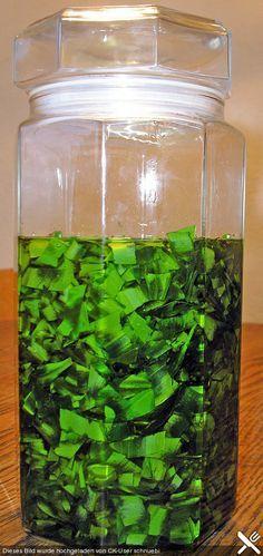 Bärlauch - Öl (Rezept mit Bild) von schnuebi | Chefkoch.de