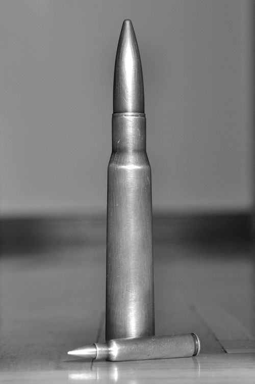 .223 hangin' out with a .50 BMG