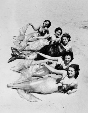 vintage mermaids http://www.kickstarter.com/projects/theoliviadarlings/the-olivia-darlings-present-an-aquatic-arts-reviva