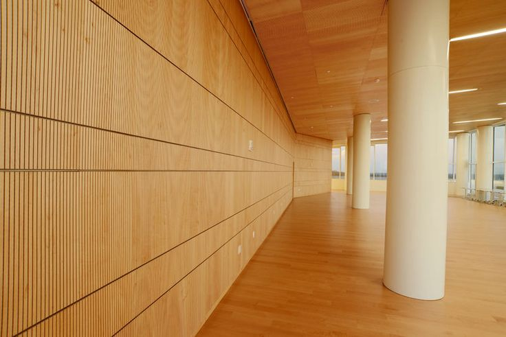 72 best james b hunt jr library images on pinterest jr on acoustic wall panels id=38158